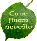 Co se jinam nevešlo