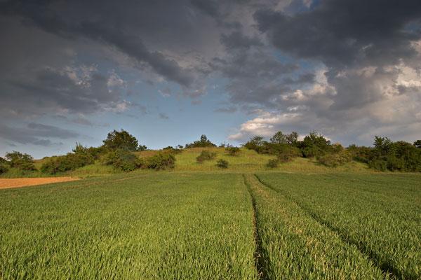 Patocka's hill