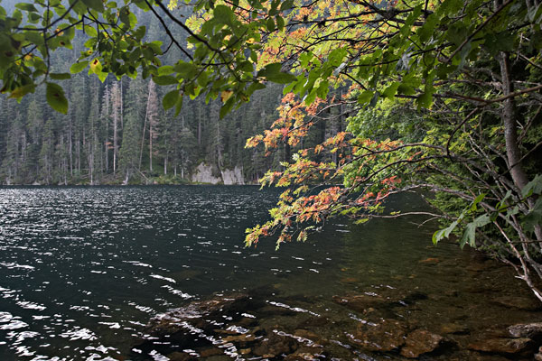 Cerne jezero (Black Lake)