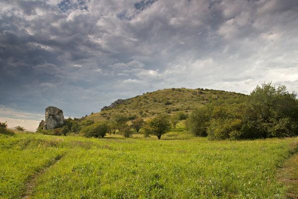 Pohled na Stolovou horu